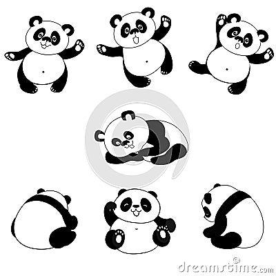 Panda bear poses