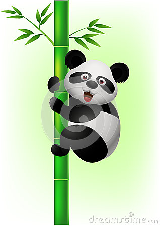 Panda climbing bamboo tree
