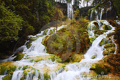 Panda lake waterfalls in Jiuzhai valley