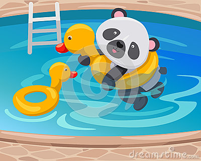 Panda swimming with duck tube