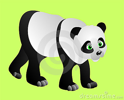 Panda, vector illustration