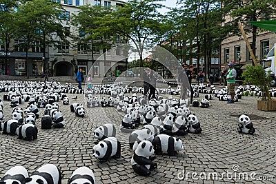 Pandas στο Κίελο Εκδοτική Εικόνες