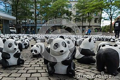Pandas em Kiel Foto Editorial