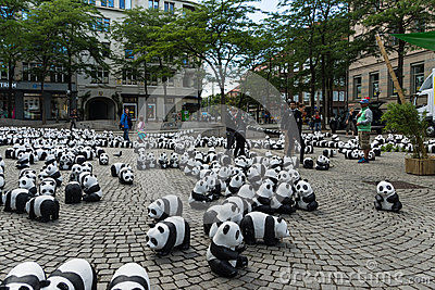 Pandas en Kiel Foto editorial