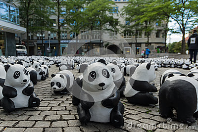 Pandas à Kiel Photo éditorial