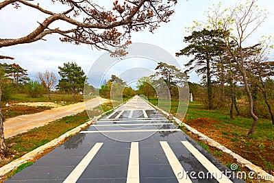 Panel of sidewalk