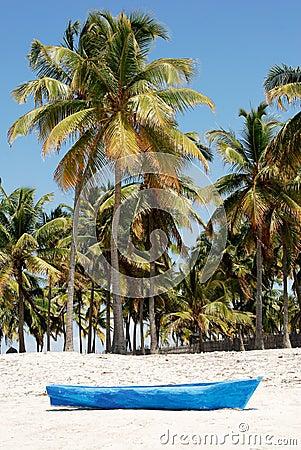 Pangane strand, Mocambique