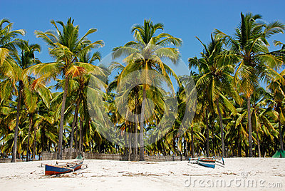 Pangane Strand, Mosambik