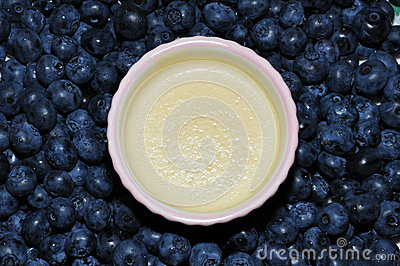 Panna cotta & blueberries