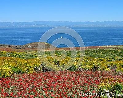 Panorama, Anacapa Island