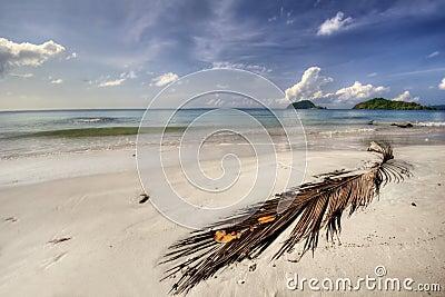 Panorama of beach of Koh Mak