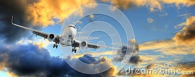 Panorama dell aeroplano in cielo di tramonto