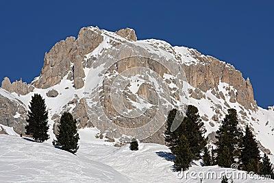 Panorama of Dolomiti Alps (Italy)
