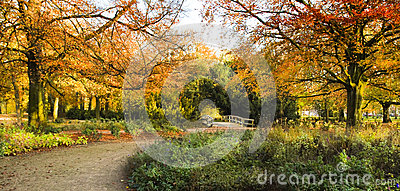 Panorama entrance of park in autumn