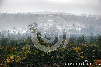 Panorama of foggy Hawaii