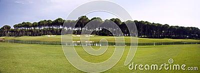 Panorama of golf club, green grass