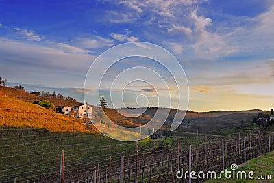 panorama hills of ipplis  friuli Italia