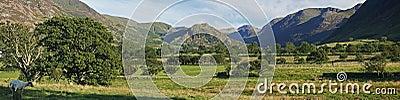 Panorama krajobrazowa