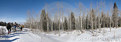 Panorama - Large group of snowshoe hikers