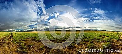 Panorama of a Montana landscape