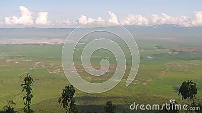 Panorama Ngorongoro konserwacji teren zbiory