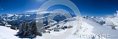 Panorama śnieg