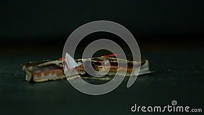 Panorama på snitt i halv liten fyrkantig chokladgodis arkivfilmer
