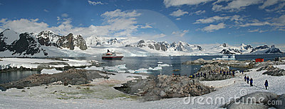 Panorama - penguin colonies, cruise ship & tourists