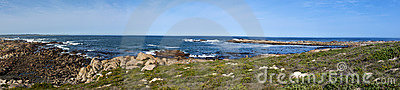 Panorama of a rocky shore