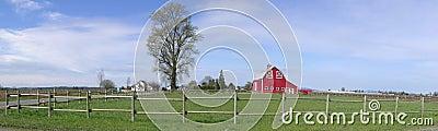 Panorama Rustic Barn