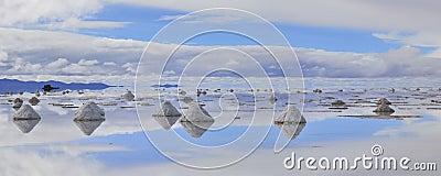 Panorama salt flat