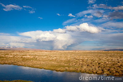 Panorama of the steppe
