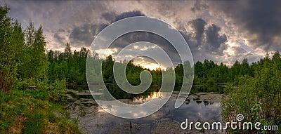 Panorama of summer lake