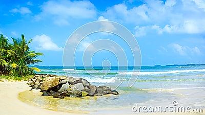 Panorama of the tropical beach in Sri Lanka.