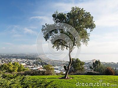 Panorama van Ventura van het Park van de Toelage