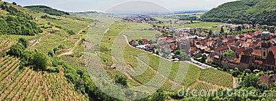 Panorama of a vineyard and a village in France