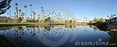 Panorama of water reflectig palm trees