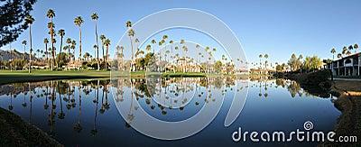 Panorama of water reflectig palm trees