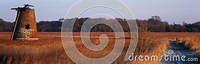 Panoramic Marshes