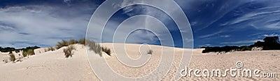 Panoramic Sand Dune