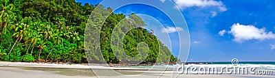 Panoramic tropics