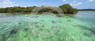 Panoramic view on shallow water