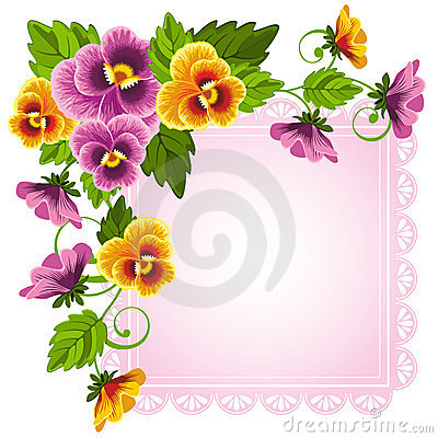 Free Pansy Stock Photography - 23692472