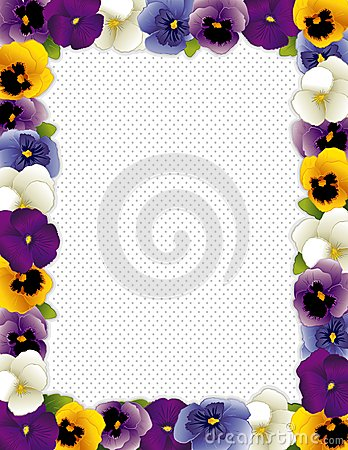 Pansy Flower Frame, Polka Dot Background