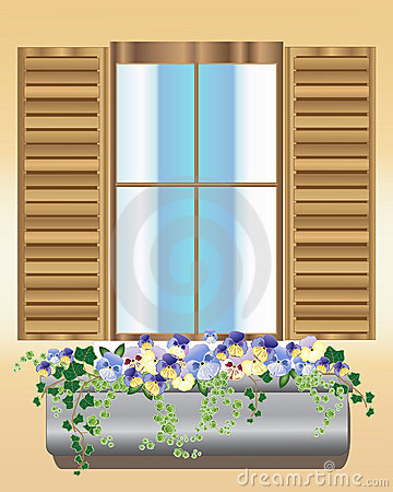 Pansy window box