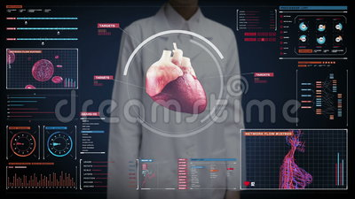 Pantalla digital conmovedora del doctor de sexo femenino, corazón de exploración Sistema cardiovascular humano Tecnología médica