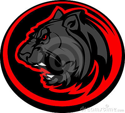 Panther Mascot Head Graphic