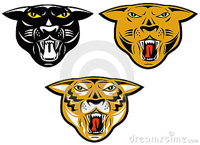 Panther,tiger and puma heads