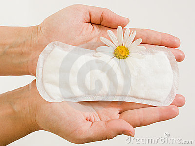 Panty liner and daisy flower on the female palms