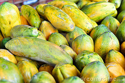 Papayas for sale in Costa Rica